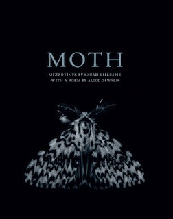 MOTH exhibition - Sarah Gillespie